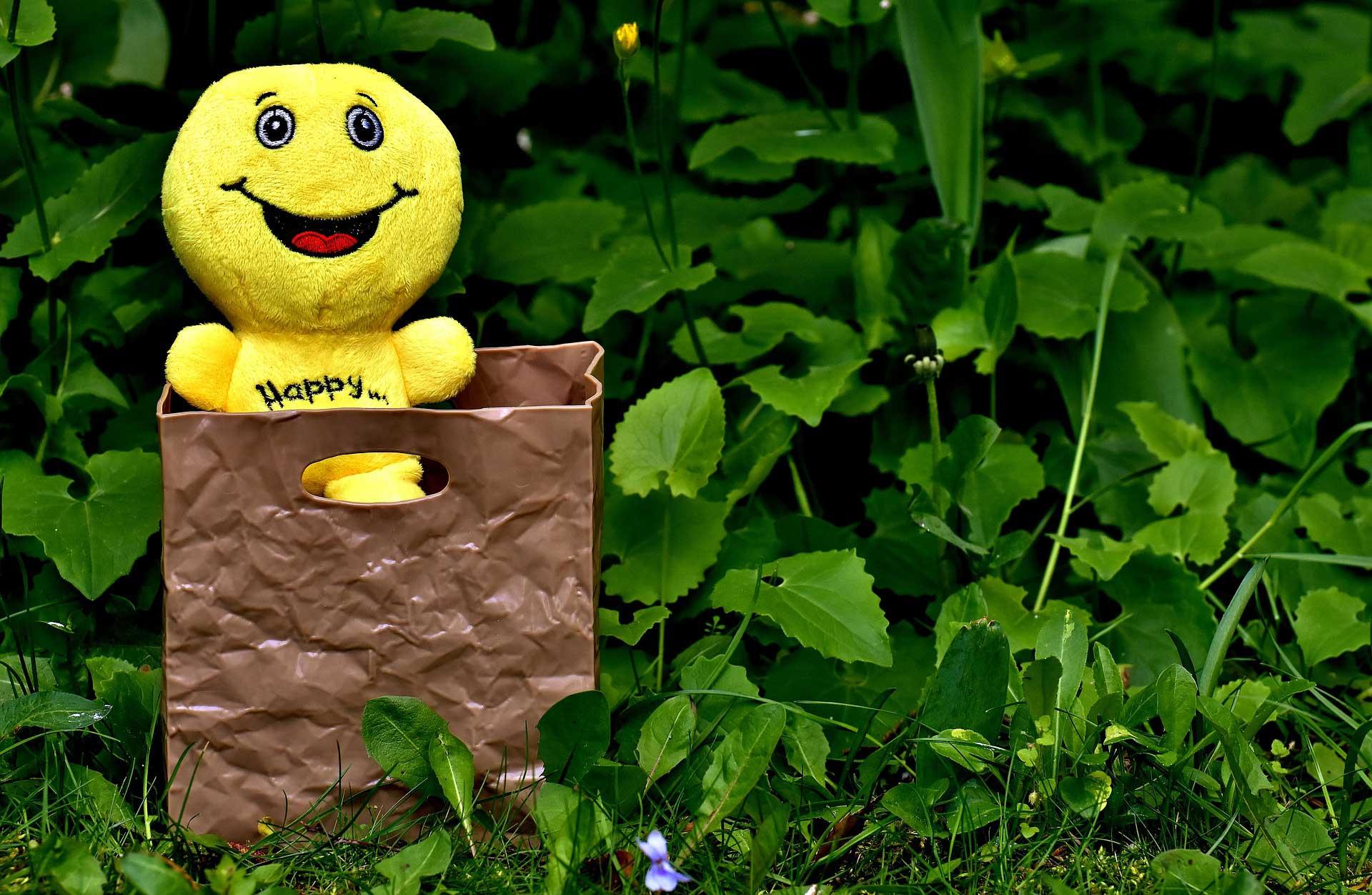 Yesil Yapraklar Arasinda Mutlu Bir Oyuncak